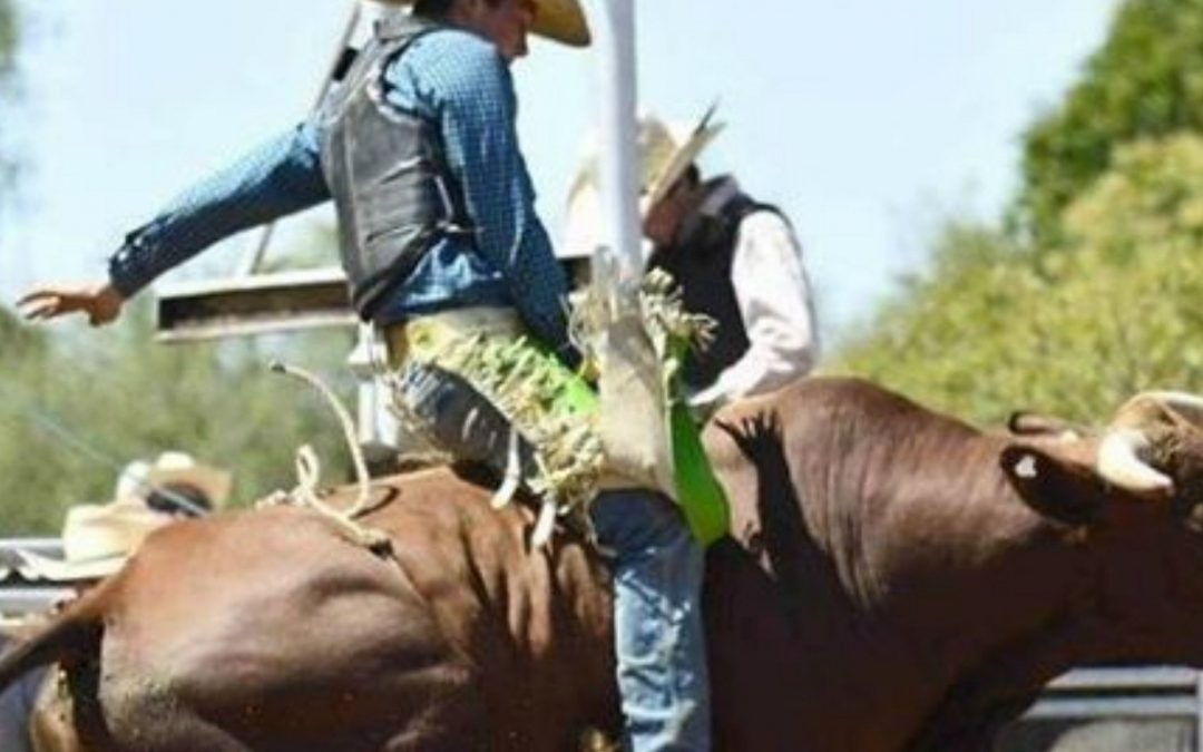 National Cherry Festival Rodeo